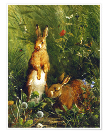 Premiumposter  Rabbits in a meadow - Olaf August Hermansen