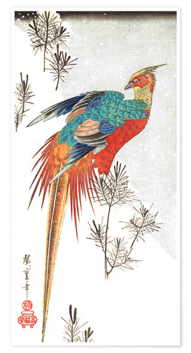 Premiumposter Pheasant and Young Pines in Snow