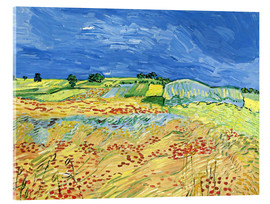 Akrylglastavla  Fields with Blooming Poppies - Vincent van Gogh