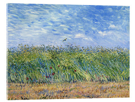 Akrylglastavla  Wheat Field with a Lark - Vincent van Gogh