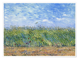 Premiumposter Wheat Field with a Lark