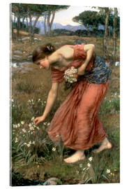 Akrylglastavla  Narcissus - John William Waterhouse