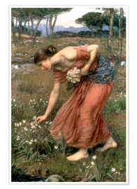 Premiumposter  Narcissus - John William Waterhouse