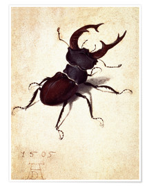 Premiumposter Stag beetle