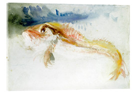 Akrylglastavla  A Gurnard - Joseph Mallord William Turner