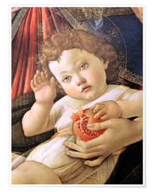 Premiumposter Christ Child from the Madonna of the Pomegranate