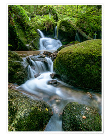 Premiumposter Little Waterfall in Black Forest