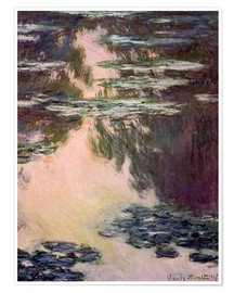 Premiumposter Waterlilies with Weeping Willows