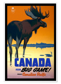 Premiumposter  Canada - big game - Travel Collection
