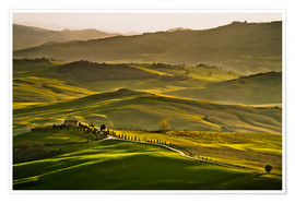 Premiumposter Evening light in Tuscany
