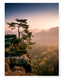 Premiumposter  Lonely Tree at Sunrise - Andreas Wonisch