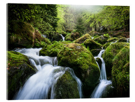 Akrylglastavla  Wild Creek in German Black Forest - Andreas Wonisch