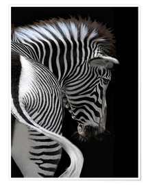 Premiumposter african stripes II