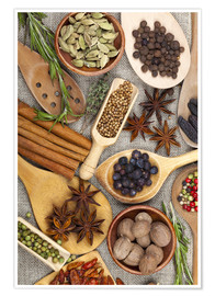 Premiumposter Spices and Herbs II