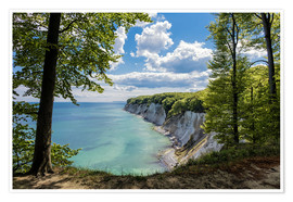 Premiumposter  Chalk cliff on the island Ruegen, Germany - Rico Ködder