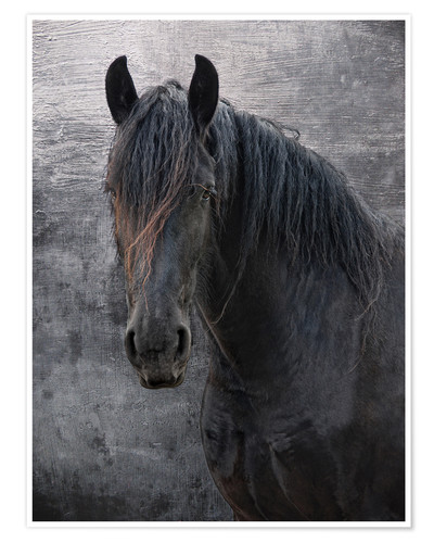Premiumposter Horse with no name