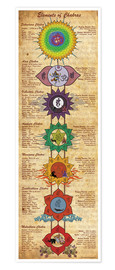 Poster  Elements of chakras - Sharma Satyakam