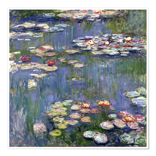 Premiumposter Water lilies