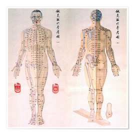 Premiumposter  Chinese chart of acupuncture points on a male body