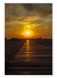Premiumposter  Evening sun in St Peter Ording on the North Sea - Dennis Stracke