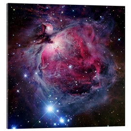 Akrylglastavla  The Orion Nebula - Robert Gendler