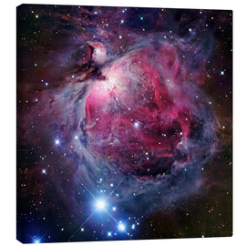 Canvastavla  The Orion Nebula - Robert Gendler