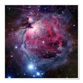 Premiumposter  The Orion Nebula - Robert Gendler