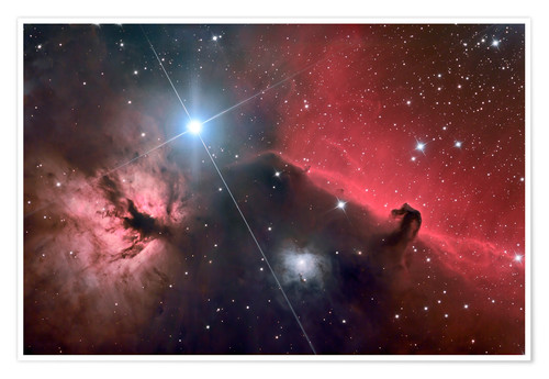 Premiumposter The Horsehead Nebula