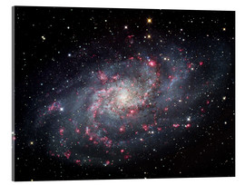Akrylglastavla  The Triangulum Galaxy - Robert Gendler