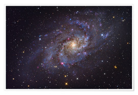 Premiumposter The Triangulum Galaxy