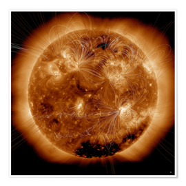 Premiumposter  Magnetic field lines on the Sun