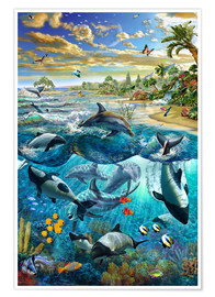 Premiumposter  Dolphin beach - Adrian Chesterman
