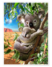 Premiumposter  Koala and cub - Adrian Chesterman