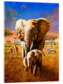 Akrylglastavla  Elephants - Adrian Chesterman