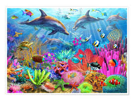 Premiumposter  Dolphin coral reef - Adrian Chesterman