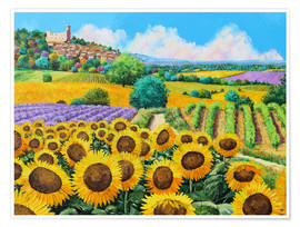 Premiumposter  Vineyards and sunflowers in Provence - Jean-Marc Janiaczyk