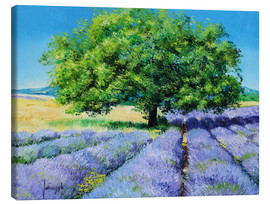 Canvastavla  Tree and Lavenders - Jean-Marc Janiaczyk