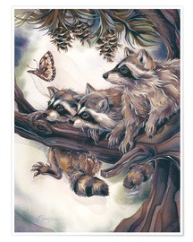 Premiumposter  Raccoons and butterfly - Jody Bergsma