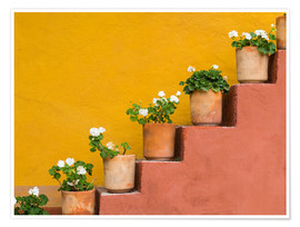 Premiumposter  Flowerpots on a staircase - Don Paulson