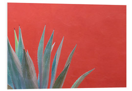 PVC-tavla  Agave in front of red wall - Don Paulson