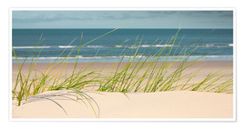 Premiumposter Dune with fine beach grass