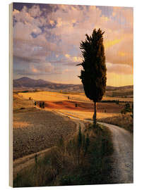 Trätavla  Evening in the Val d'Orcia, Tuscany - Matteo Colombo