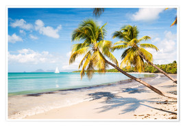 Premiumposter Les Salines beach, Martinique