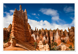 Premiumposter  Queen's garden trail at Bryce Canyon - Circumnavigation