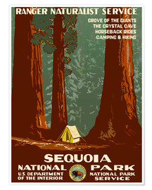Premiumposter  Sequoia National Park - Travel Collection