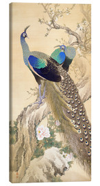 Canvastavla  Two peacocks in spring - Imao Keinen