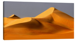 Canvastavla  Great Sand Sea, Sahara - Moser