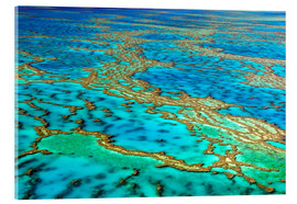 Akrylglastavla  Great Barrier Reef, Australia - I. Schulz