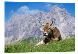 Akrylglastavla  Cow on a mountain meadow - Bjorn Svensson