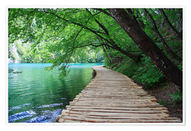 Premiumposter  Plitvice Lakes National Park Boardwalk - Renate Knapp